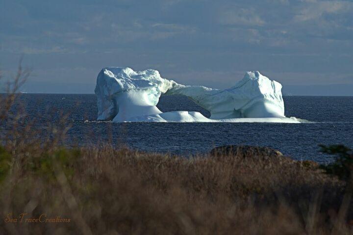 Iceberg off the coast of Newfoundland