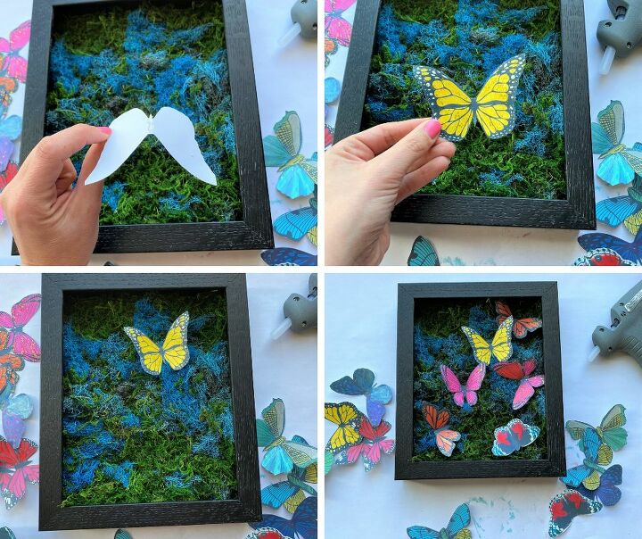 beautiful butterfly shadow box