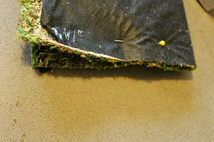 cute diy moss pouches