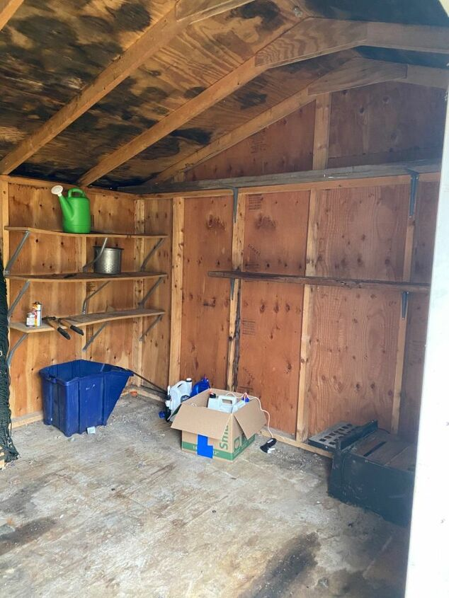 q how can i clean and repair this shed