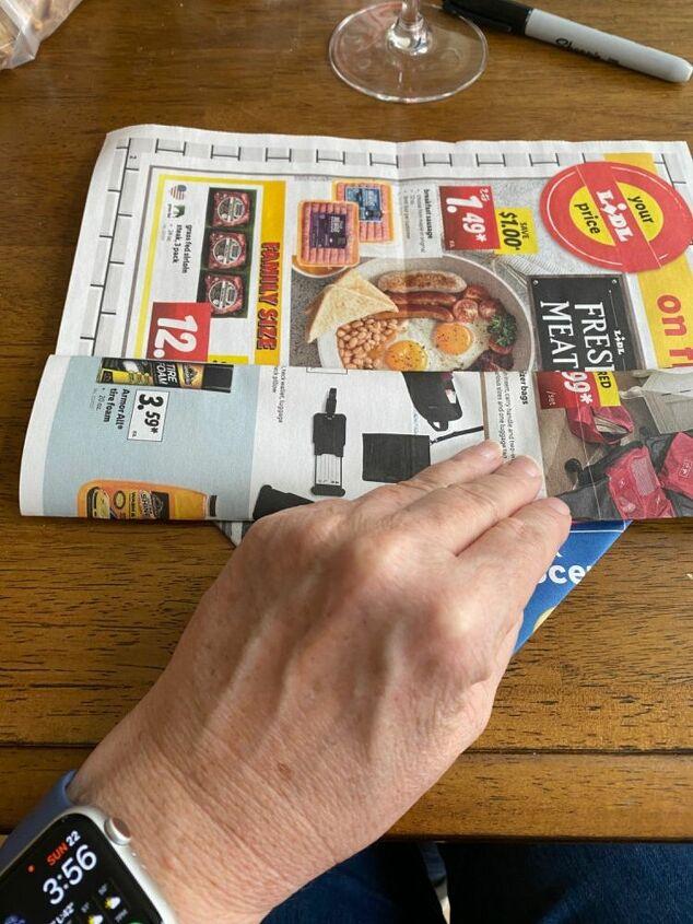 newspaper seed pot quarantine project