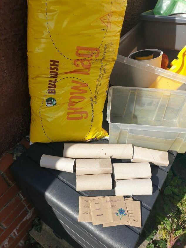 toilet roll seed starters