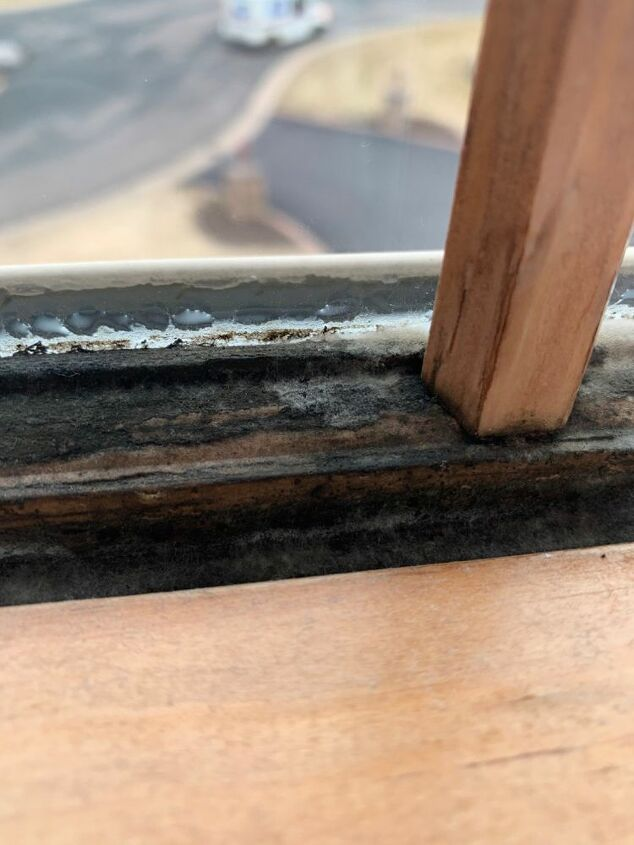 q how to get mold off window frame
