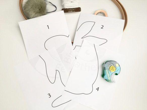 bunny photo display