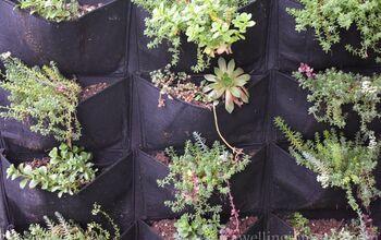Easiest Vertical Garden Ever!