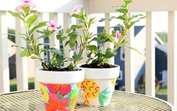 DIY Colorful Floral Pots With Mod Podge
