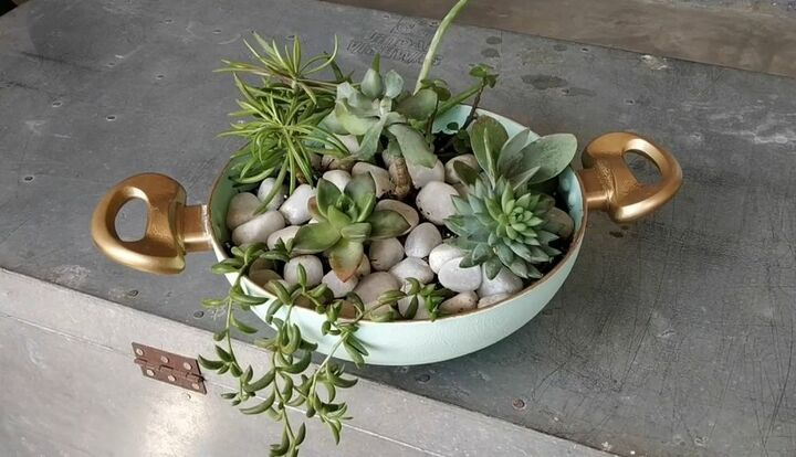 s 15 crazy creative ways to reuse old pots and pans around your home, Transform an old frying pan into a succulent planter