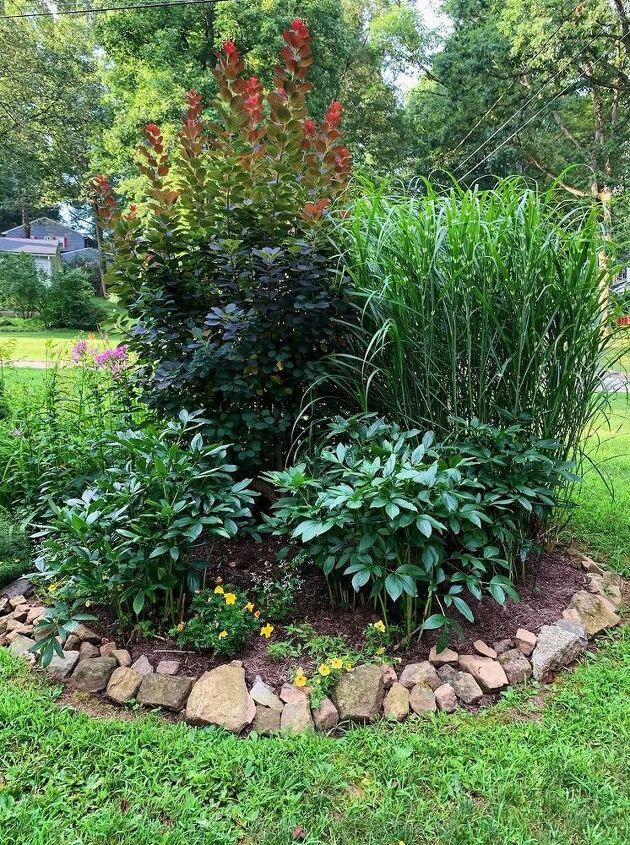 how to start a garden, the well garden before adding the new bed