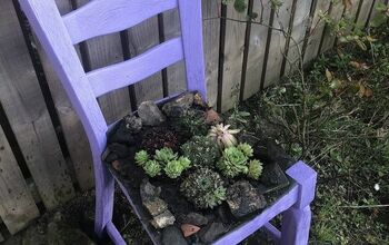 DIY Succulent Chair Planter