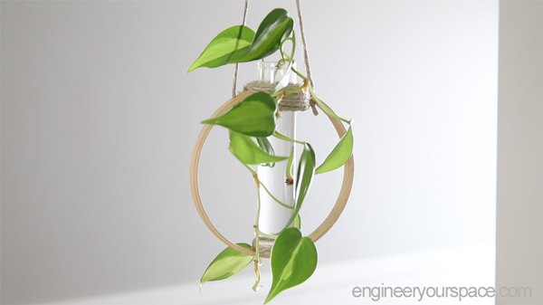 diy test tube plant propagation station mother s day gift