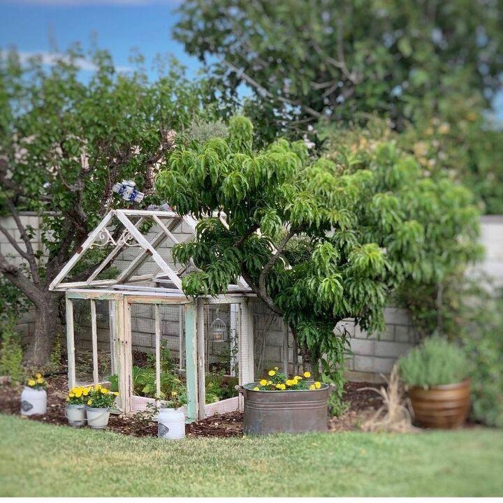 Tomato 🍅 Greenhouse