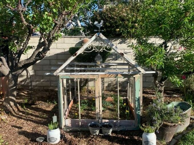 old windows greenhouse, Voila