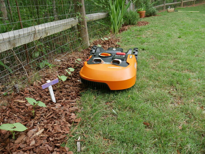 grow your own food integrating vegetables and herbs in your landscape