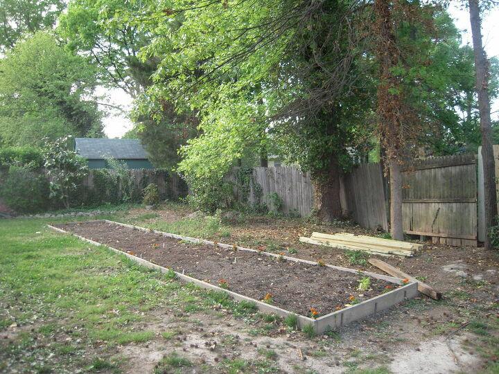 raised bed garden diy