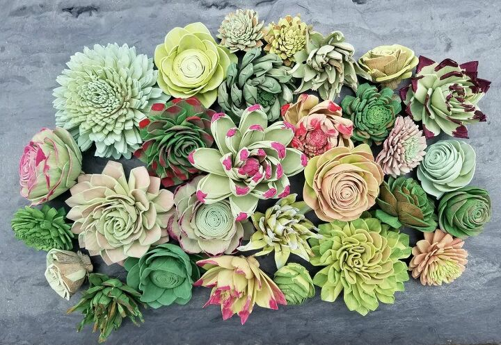 how to dye sola wood flowers succulents edition