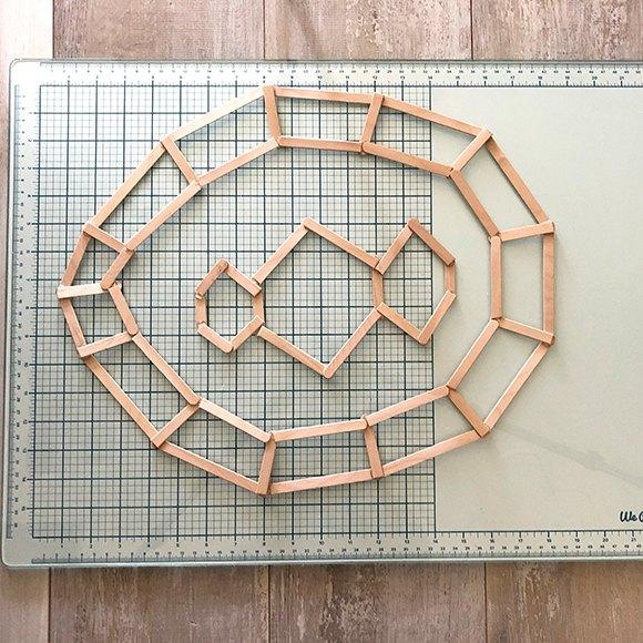 geometric tortoise