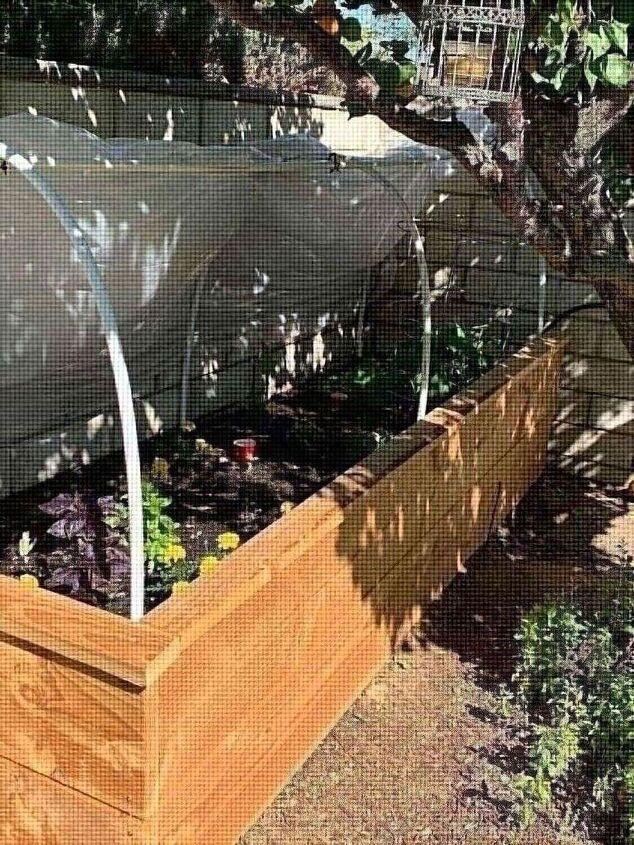 raised garden bed, Our new garden bed
