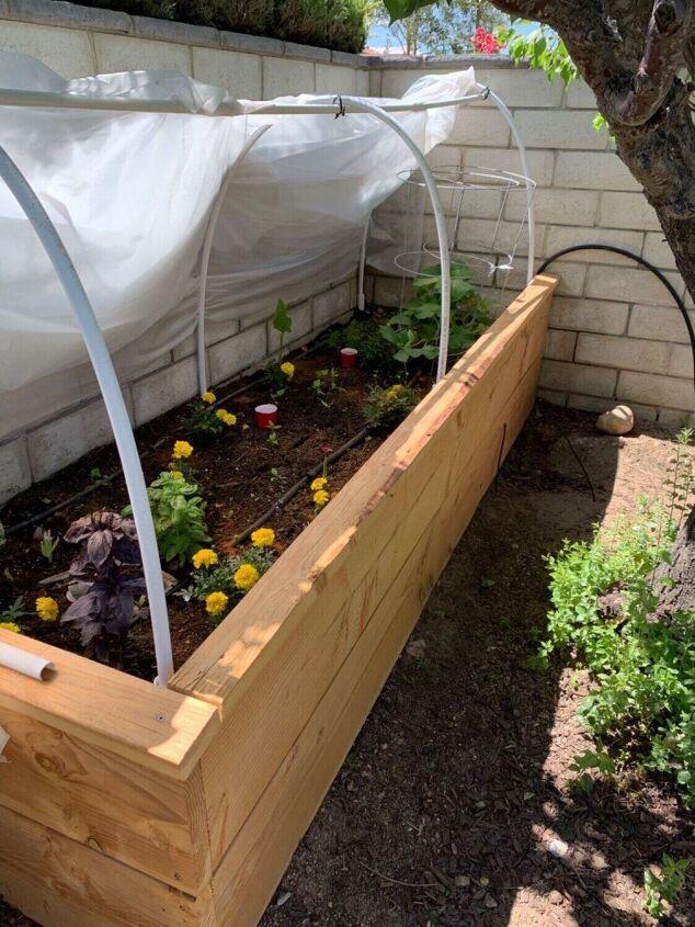 raised garden bed, Raised Garden Bed