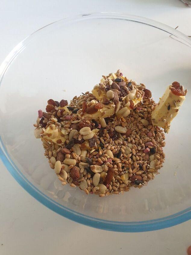 bird food stars
