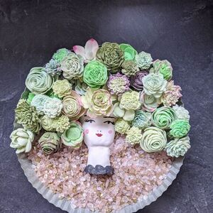 Sola Wood Flower Succulents