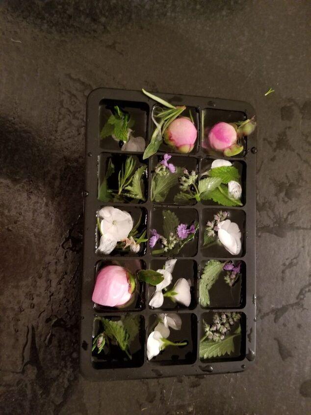pretty botanical ice cubes