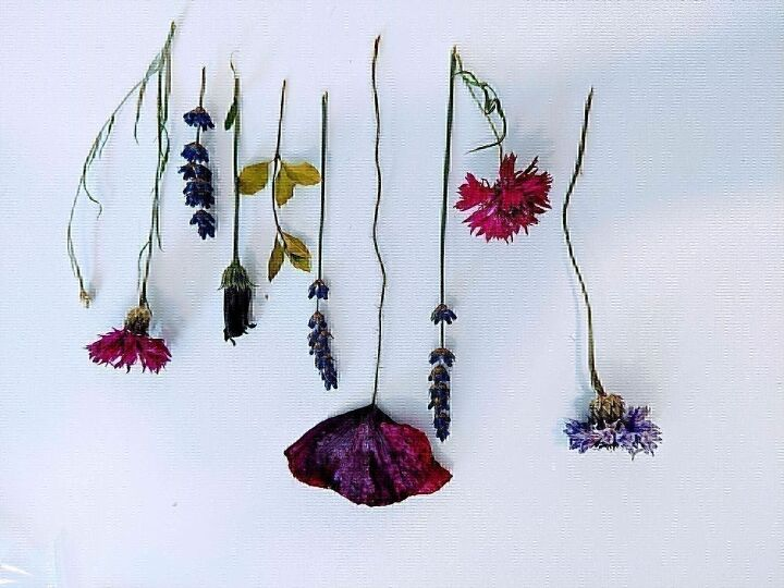 framed dried flowers