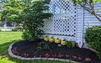4 Simple Ways to Spruce Up Your Yard