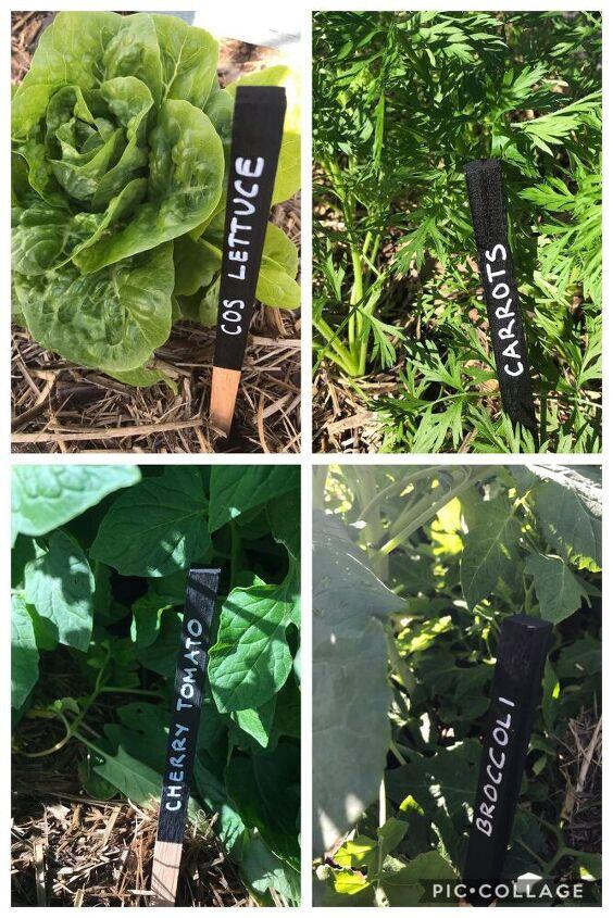 pretty garden labels
