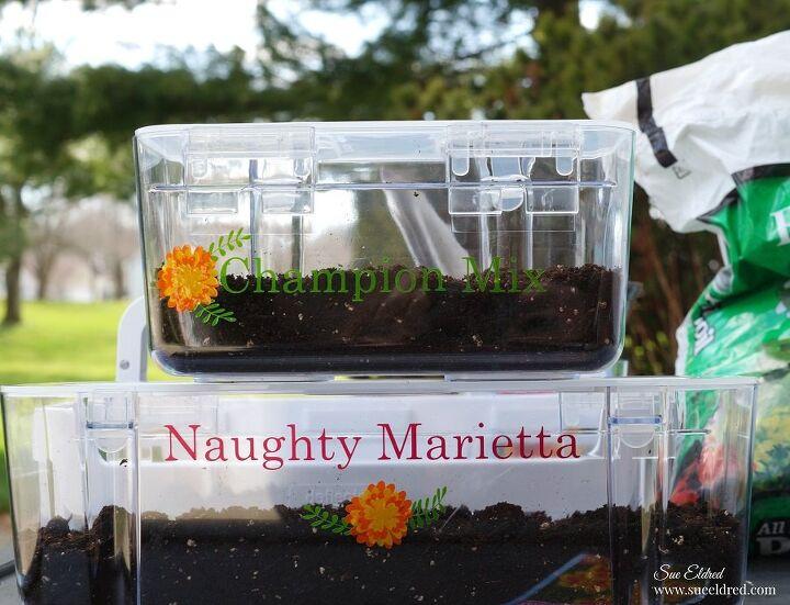 mini greenhouse seed starter