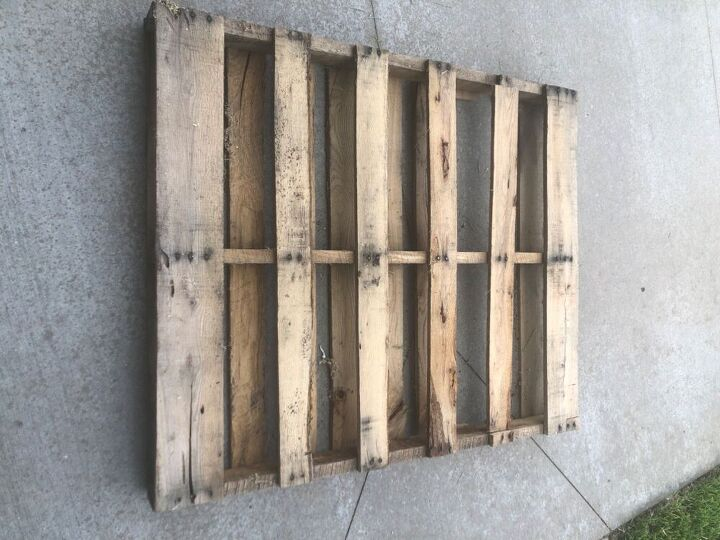 plant propagation station from pallet boards