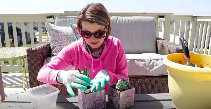 Add Succulents