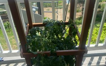 How to Make Tomato Cages.