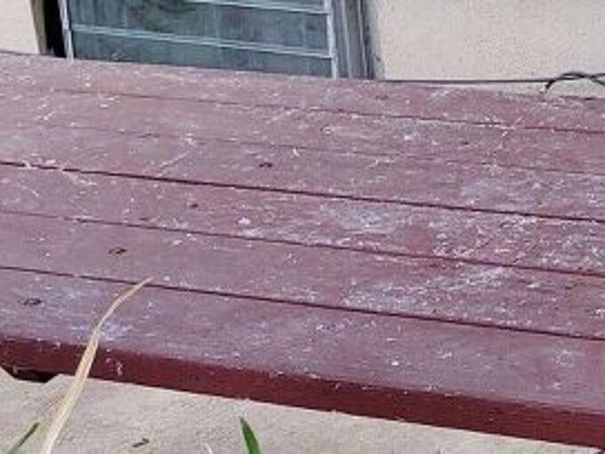 q wood table
