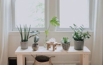 DIY Plant Bench in 1 Hour