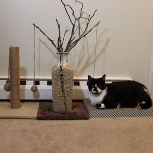 Upcycled Cat Tree