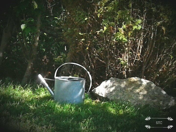 summer bird bath and winter bird feeder