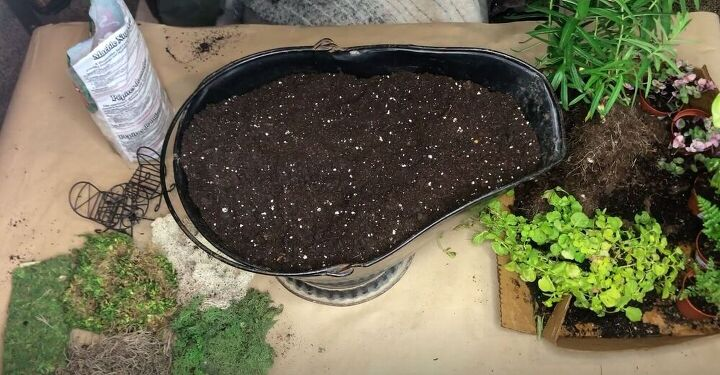 Add Potting Mix