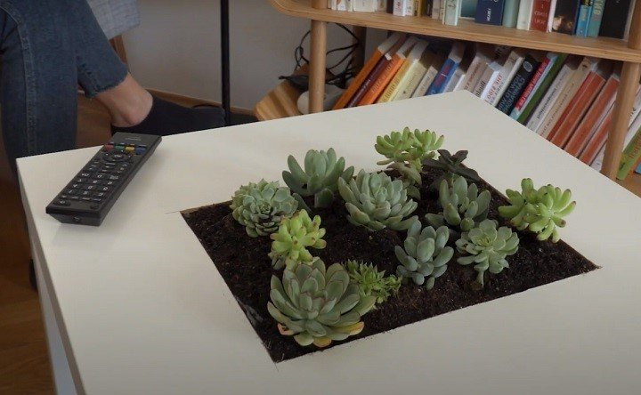 diy succulent table step by step instructions to do it yourself