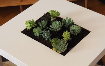 DIY Succulent Table: Step-By-Step Instructions to Do It Yourself