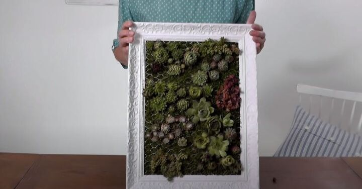 diy vertical garden planting succulents in a picture frame