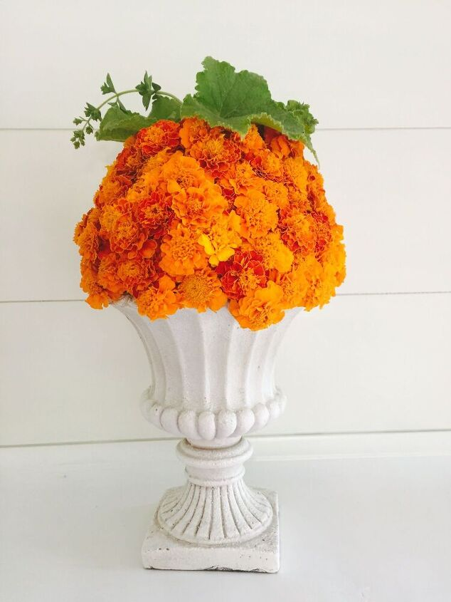 easy marigold pumpkin tutorial