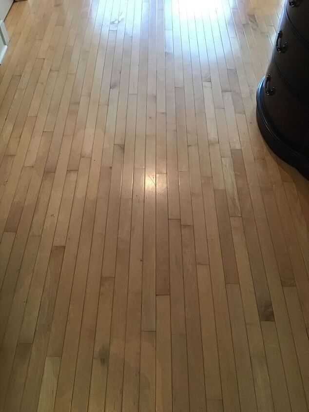 q can maple hardwood floor be stained a diff color