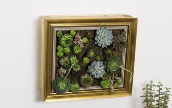 DIY Succulent Picture Frames