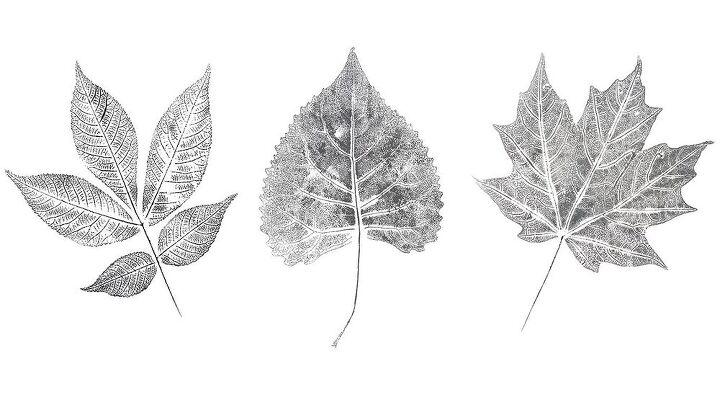 diy wall art for fall black white leaf printing
