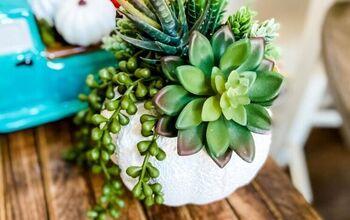 DIY Fall Succulent Display