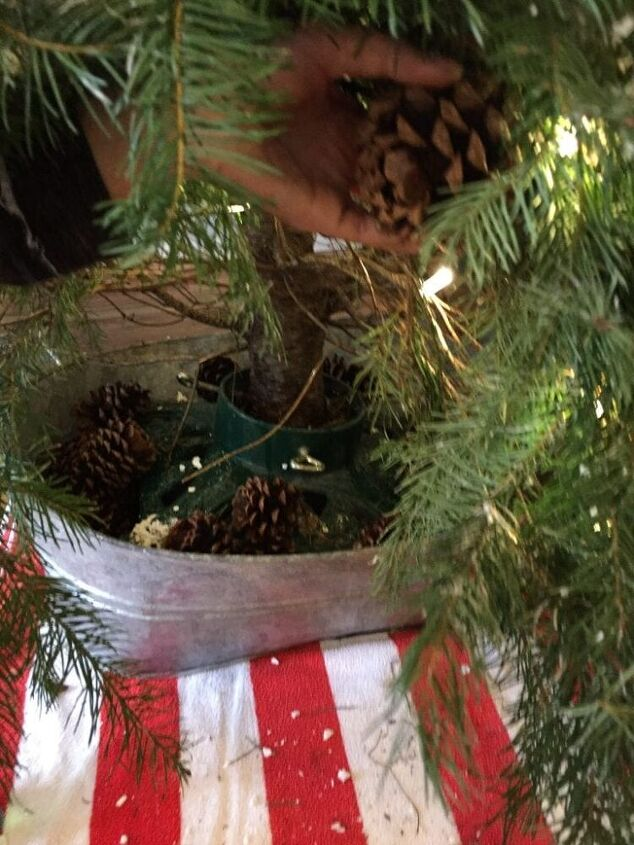 Simple Trick to Keep Cats Out of the Christmas Tree! | Hometalk