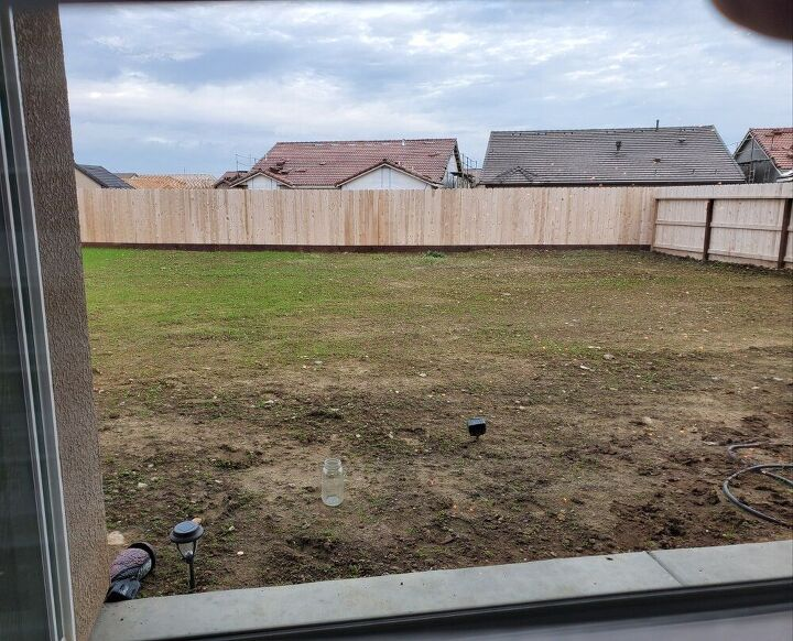 q diy backyard landscaping allergic to bees no hornets any ideas