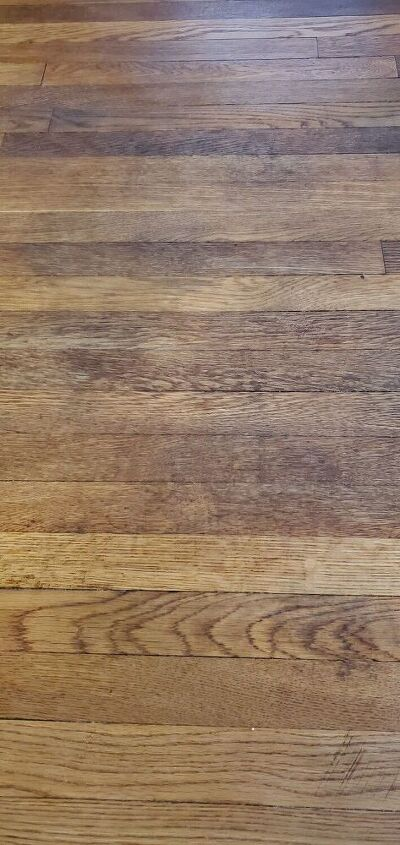 pet stains on hardwood floors, After