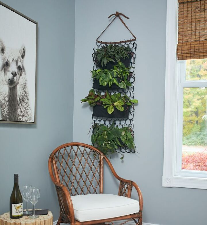 diy plant wall for a small space