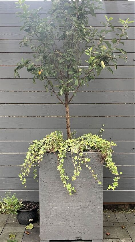 diy large cement planters how to make it in one weekend